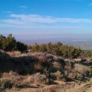 9.98 Acres for Sale in Llano, CA