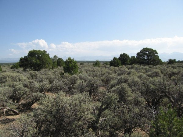 2.5 Acres for Sale in San Luis, CO