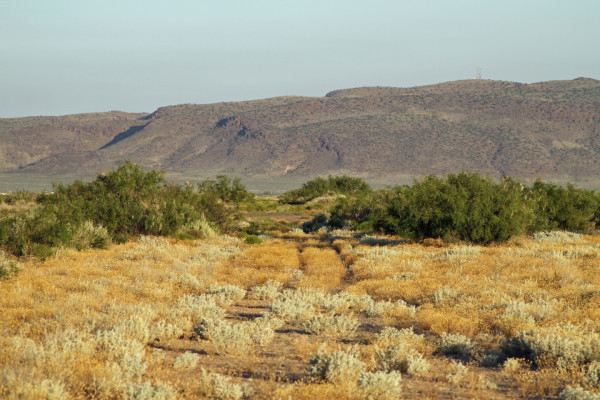 2.07 Acres for Sale in Deming, NM