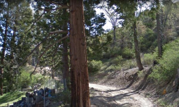 0.07 Acres for Sale in Cedar Glen, CA