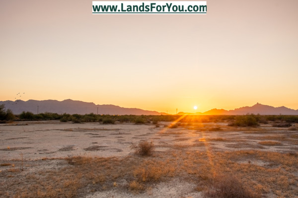 80 Acres for Sale in Roll, AZ