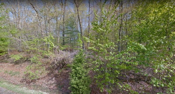 0.34 Acres for Sale in Crossville, TN