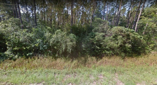 1.93 Acres for Sale in Milton, FL