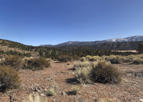 0.17 Acres for Sale in Big Bear City, CA
