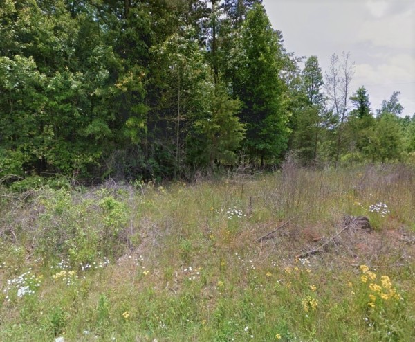 14 Acres for Sale in Belton, SC