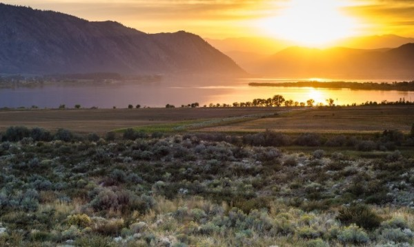 19.96 Acres for Sale in Brewster, WA