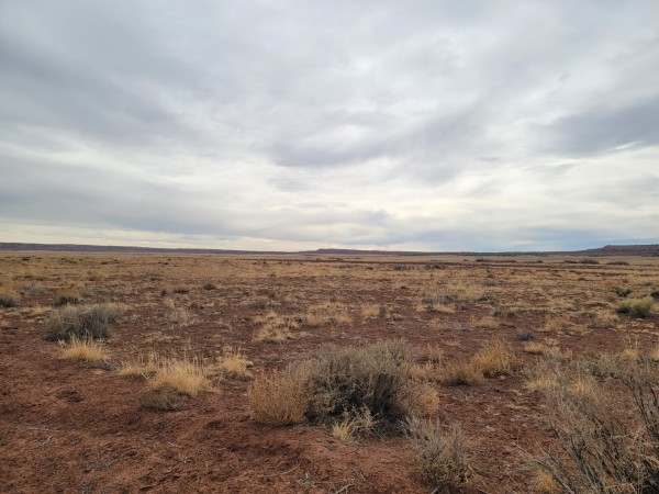 36.71 Acres for Sale in Saint Johns, AZ