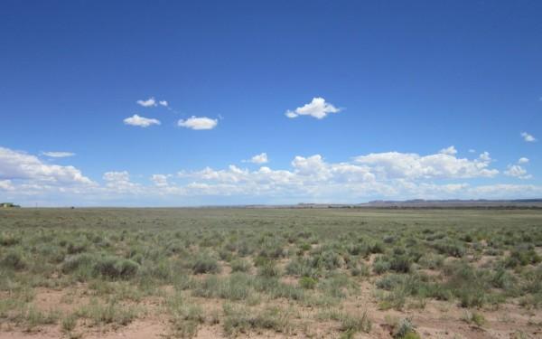 5 Acres for Sale in Holbrook, AZ
