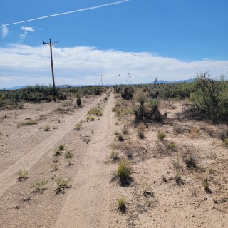 2 Lots for Sale in Dell City, TX