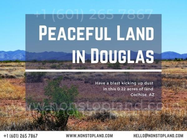 0.22 Acres for Sale in Douglas, AZ