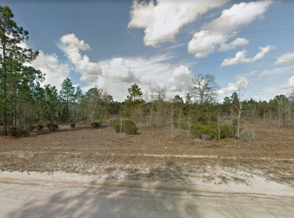 0.5 Acres for Sale in Georgetown, FL