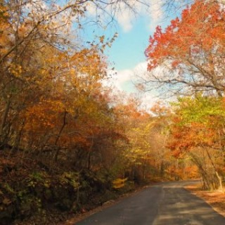 0.1 Acres for Sale in Cherokee Village, AR