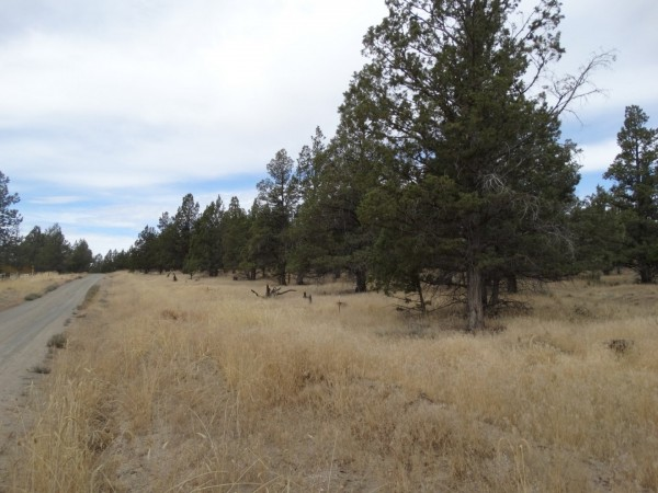2.04 Acres for Sale in Alturas, CA