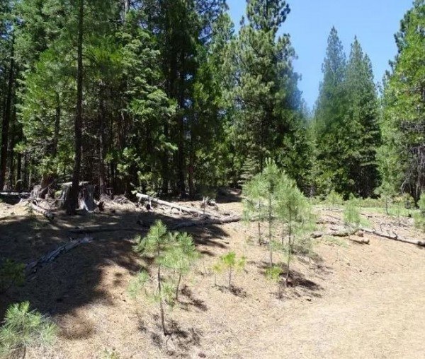 1.16 Acres for Sale in Alturas, CA
