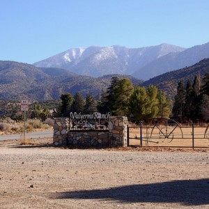 2.5 Acres for Sale in Valyermo, CA