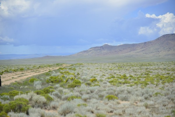 5.27 Acres for Sale in Blanca, CO