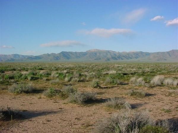 1.25 Acres for Sale in Holbrook, AZ