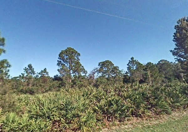 1.33 Acres for Sale in Okeechobee, FL