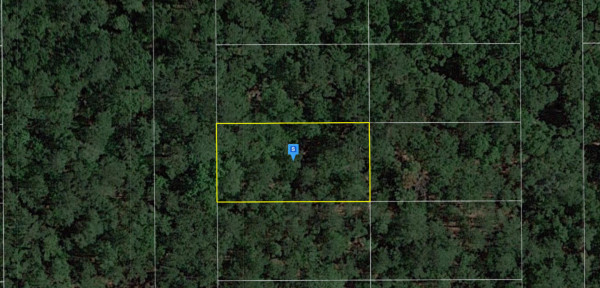 0.25 Acres for Sale in Live Oak, FL