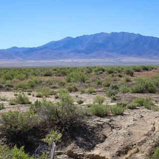 40 Acres for Sale in Imlay, NV