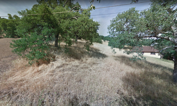 nice hillside property