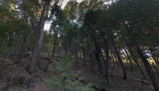 0.06 Acres for Sale in Crestline, CA