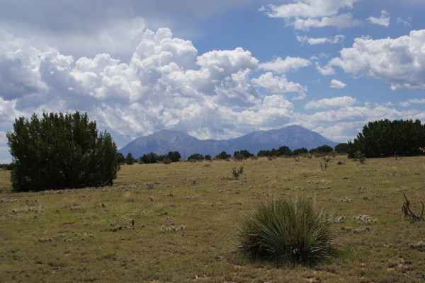 2.05 Acres for Sale in Walsenburg, CO
