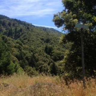 0.31 Acres for Sale in Shelter Cove, CA