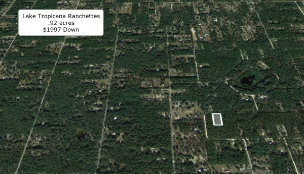 0.92 Acres for Sale in Dunnellon, FL