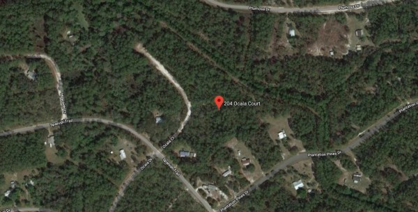 1.5 Acres for Sale in Georgetown, FL