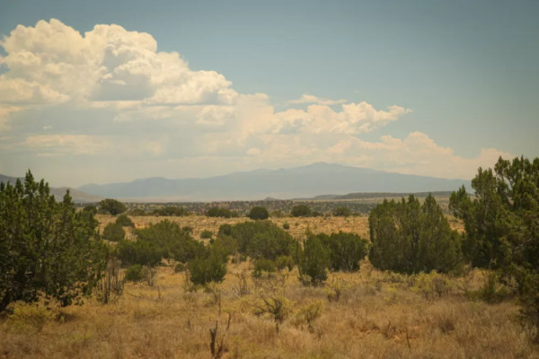 30.13 Acres for Sale in Corona, NM