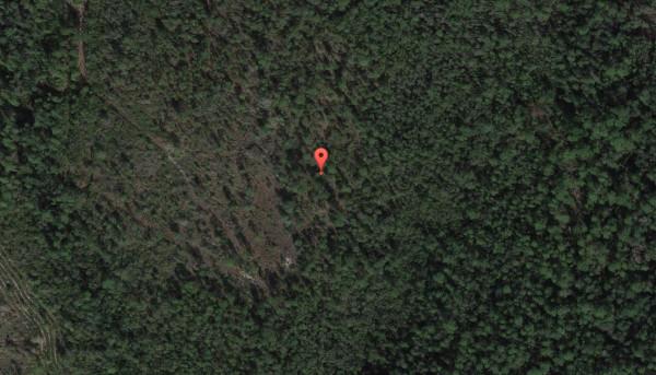 40-acres-bay-county-fl-google-view-l