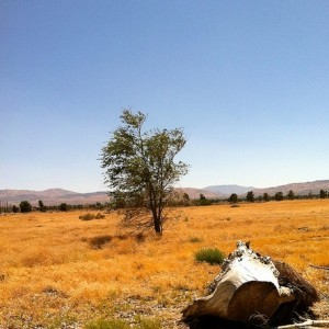 1.68 Acres for Sale in Lancaster, CA