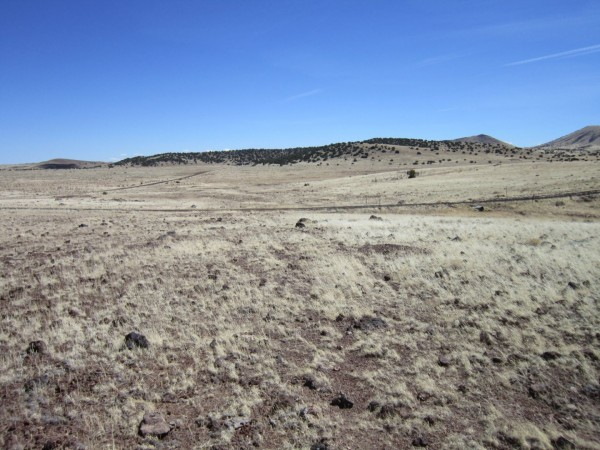3.03 Acres for Sale in Concho, AZ
