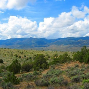 640 Acres for Sale in Wells, NV