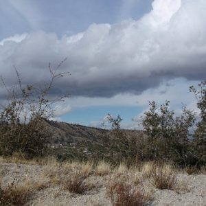 10 Acres for Sale in Phelan, CA