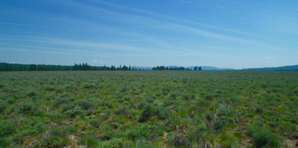 9.3 Acres for Sale in Chiloquin, OR