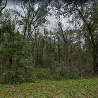 0.2 Acres for Sale in Interlachen, FL