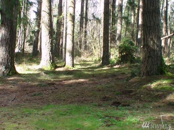 Land for Sale in Yelm, WA
