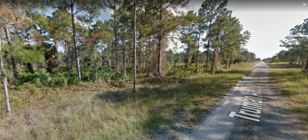 1 Acre for Sale in Lehigh Acres, FL