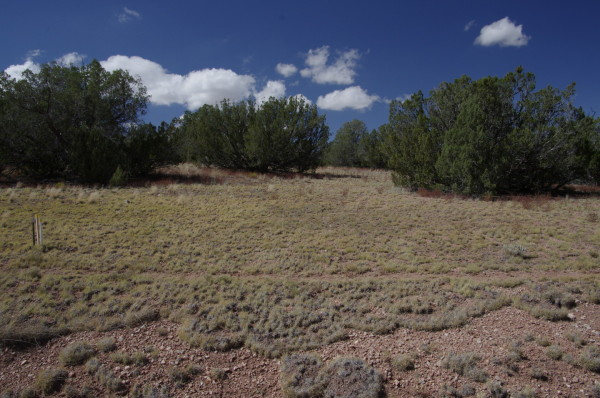 2.3 Acres for Sale in Seligman, AZ