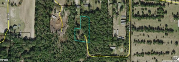 1.32 Acres for Sale in Greenwood, FL