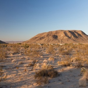 5 Acres for Sale in Landers, CA