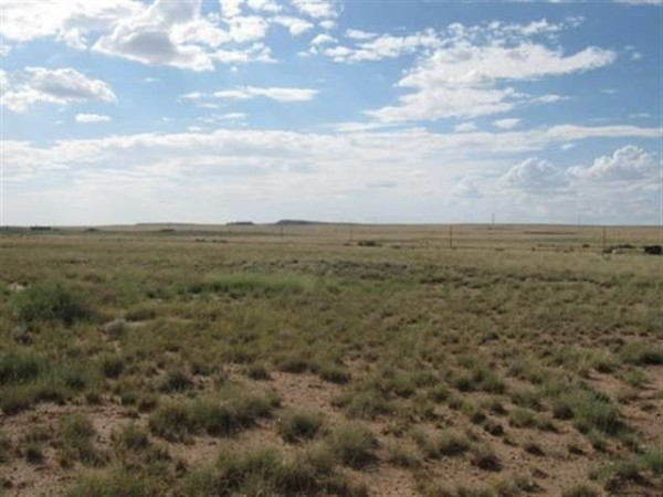 1.13 Acres for Sale in Holbrook, AZ