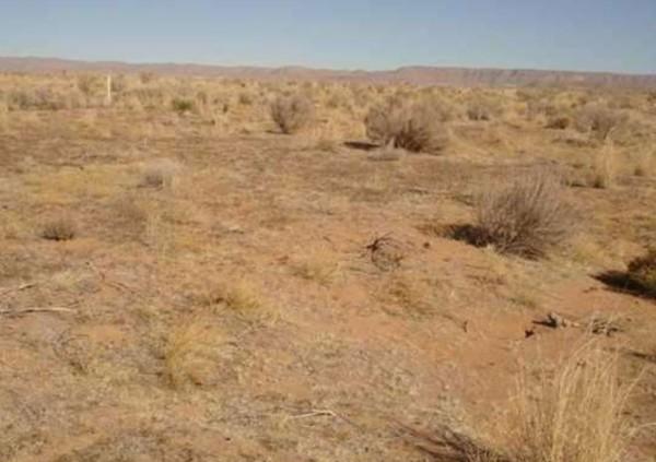 Terrain in Sparks Ranch III