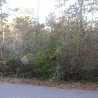 0.4 Acres for Sale in Milton, FL