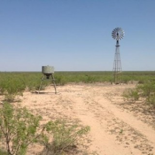 0.14 Acres for Sale in Mccamey, TX