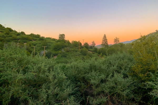 0.05 Acres for Sale in Lake Arrowhead, CA