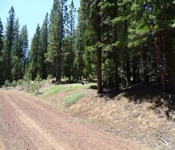 1.03 Acres for Sale in Alturas, CA