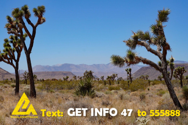10 Acres for Sale in Yucca Valley, CA